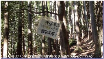 191123_ogurayama_komekaimiti_034
