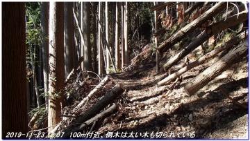 191123_ogurayama_komekaimiti_036