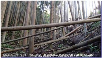 191123_ogurayama_komekaimiti_039
