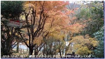 191207_nakahechi_tikatuyu_hossinmon_018