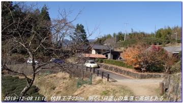 191208_dainitikoe_hongu_hossinmon_028
