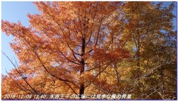 191208_dainitikoe_hongu_hossinmon_037
