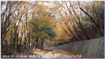 191214_ogurayama_komekaimiti_mizuo_012