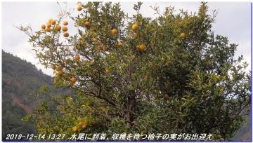 191214_ogurayama_komekaimiti_mizuo_045