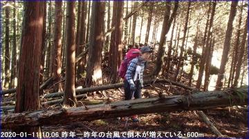 200111_hanaoretoge_nishioritateyama_015