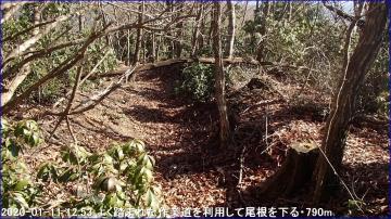 200111_hanaoretoge_nishioritateyama_038
