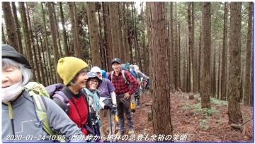 200124_momoitoge_tengusugi_007