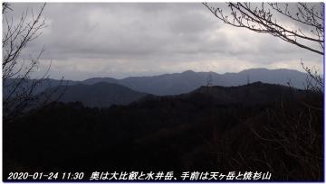 200124_momoitoge_tengusugi_019