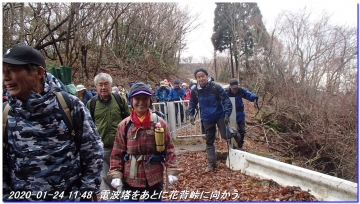 200124_momoitoge_tengusugi_026