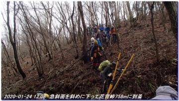 200124_momoitoge_tengusugi_032
