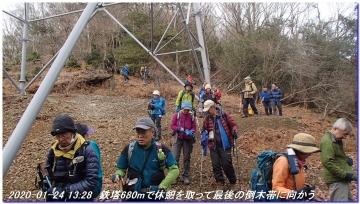 200124_momoitoge_tengusugi_043