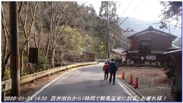 200124_momoitoge_tengusugi_050
