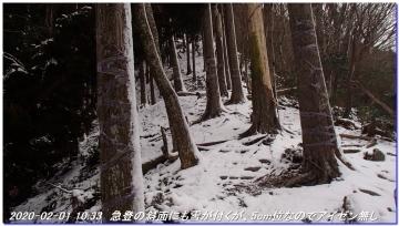 200201_hanaoretoge_nishioritateyama_019