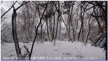 200201_hanaoretoge_nishioritateyama_038