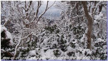 200201_hanaoretoge_nishioritateyama_047