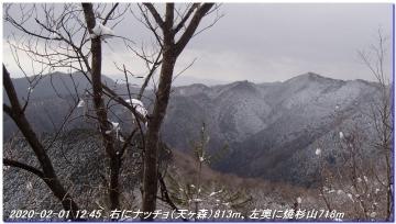 200201_hanaoretoge_nishioritateyama_049