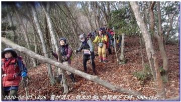 200201_hanaoretoge_nishioritateyama_060