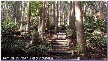 200224_25_tanba_mitake_sasayama_009